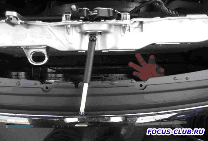 Установка газовых упоров капота Ford Focus 3