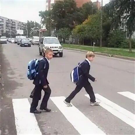 Школьников заставят выучить ПДД фото